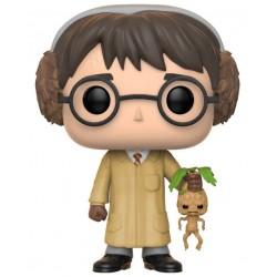 Harry Potter - Cours de Botanique - Funko